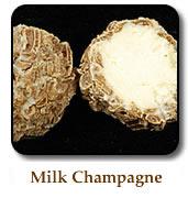 truffle1-milkchampagne