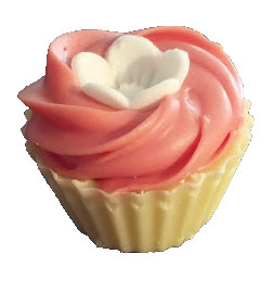 Pink prosecco chocolate cupcake