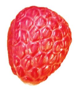 White Raspberry in white chocolate